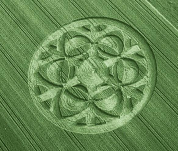 crop suisse1.jpg