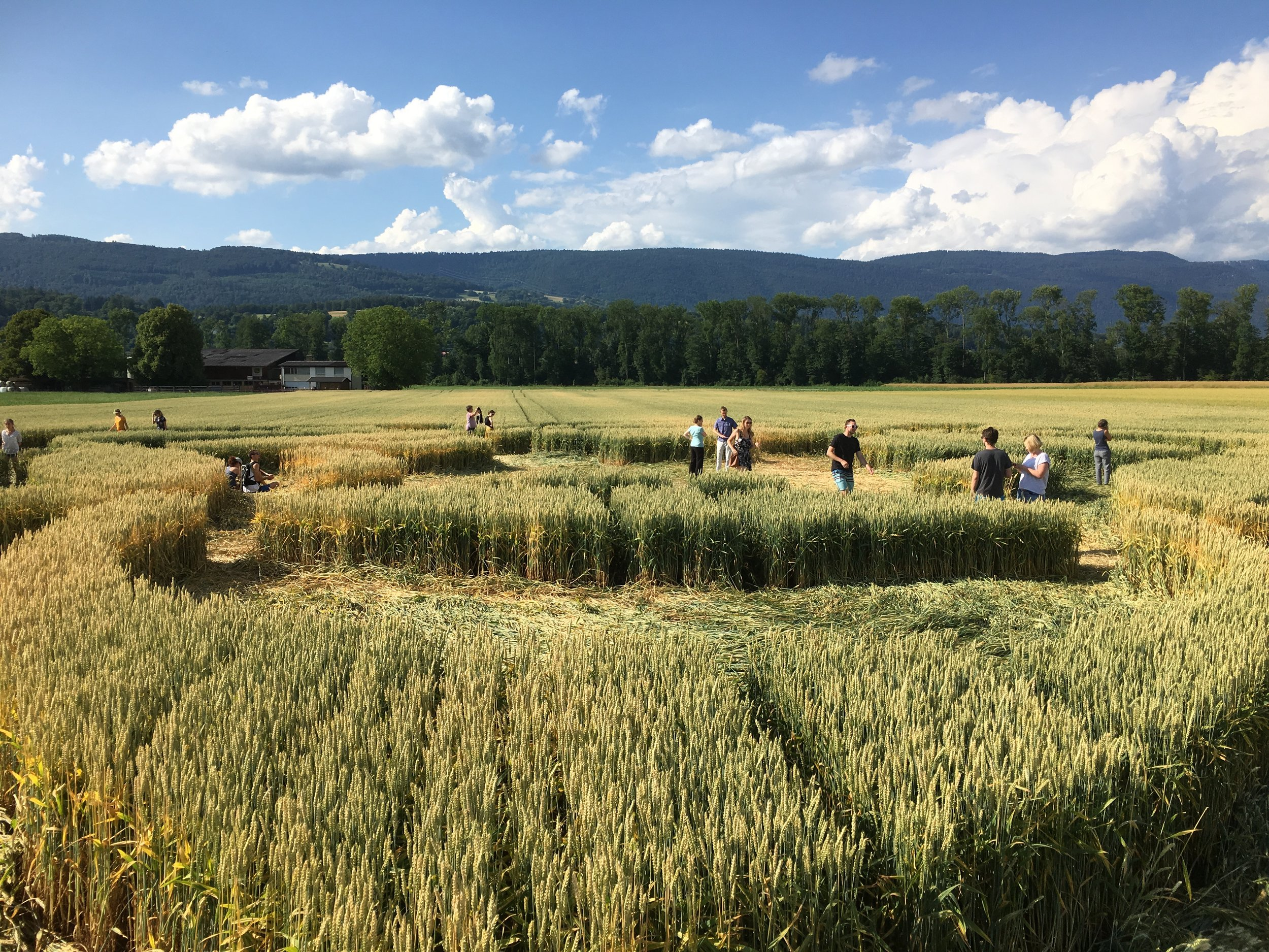 crop suisse2JPG.JPG
