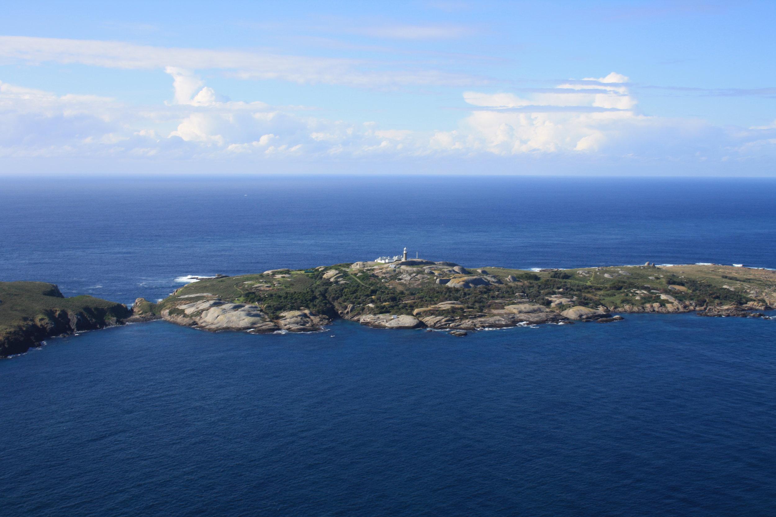 Barranguba (Montague Island)