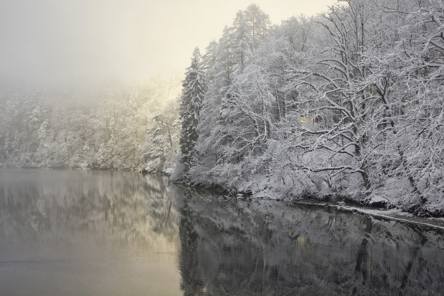 """winter lake"""