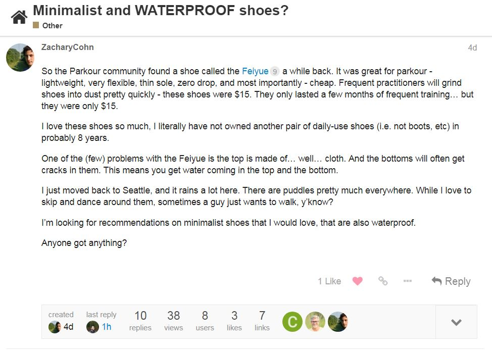 waterproof shoes.JPG