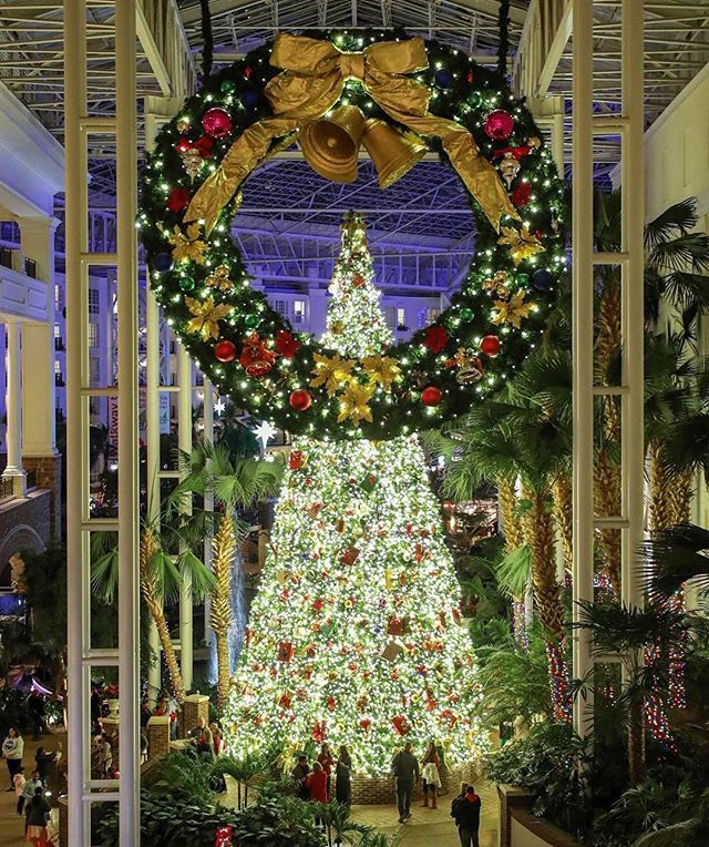 Merry Christmas! 🎄🎁 📸: @nashvilletn @gaylordoprylandresort by @ryanjasonphotography #rp #nashville #gaylordopryland #gaylordoprylandresort • . . . . . #gaylordoprylandhotel #gaylordoprylandice #iceatgaylordopryland #ice #iceskating #nashvilleevents #christmasevents #grinch #festive #feativelights #nashvilletn #nashvillelights #nashvillephotographer #nashvillepics #photooftheday #christmastree #instachristmas #christmasdecor #fifthandb #nashvillestyle #opryland #oprylandchristmas #oprylandhotel #countrychrisrmas