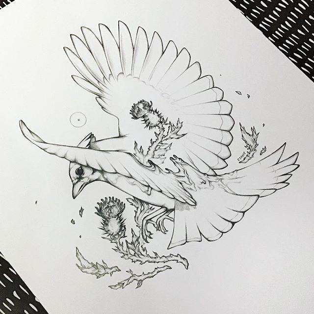 Who recognizes this bird without the color? .   Swiss update: Je serai à Japan Impact ce week-end, si vous êtes dans le coin passez faire un coucou! Sinon je serai aussi présente à Polymanga🎋 . #illustration #artistofinstagram #floralillustration #birddrawing #artofinstagram #graphite #drawing #lineart #animalillustration #artwork