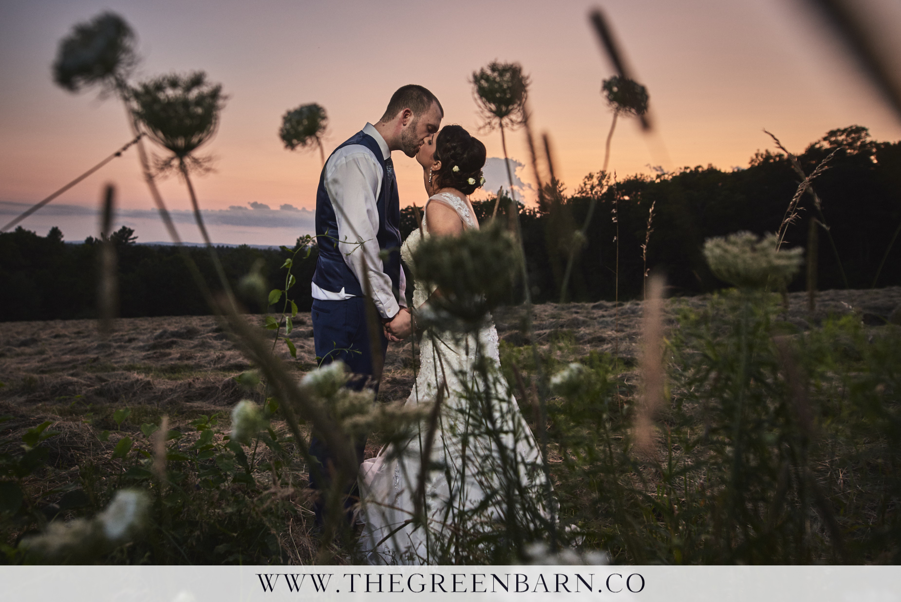 Bride and Groom Kissing at Sunset in the Field at Harrington Farm Photo by Cate Bligh of The Green Barn Wedding Photography LLC