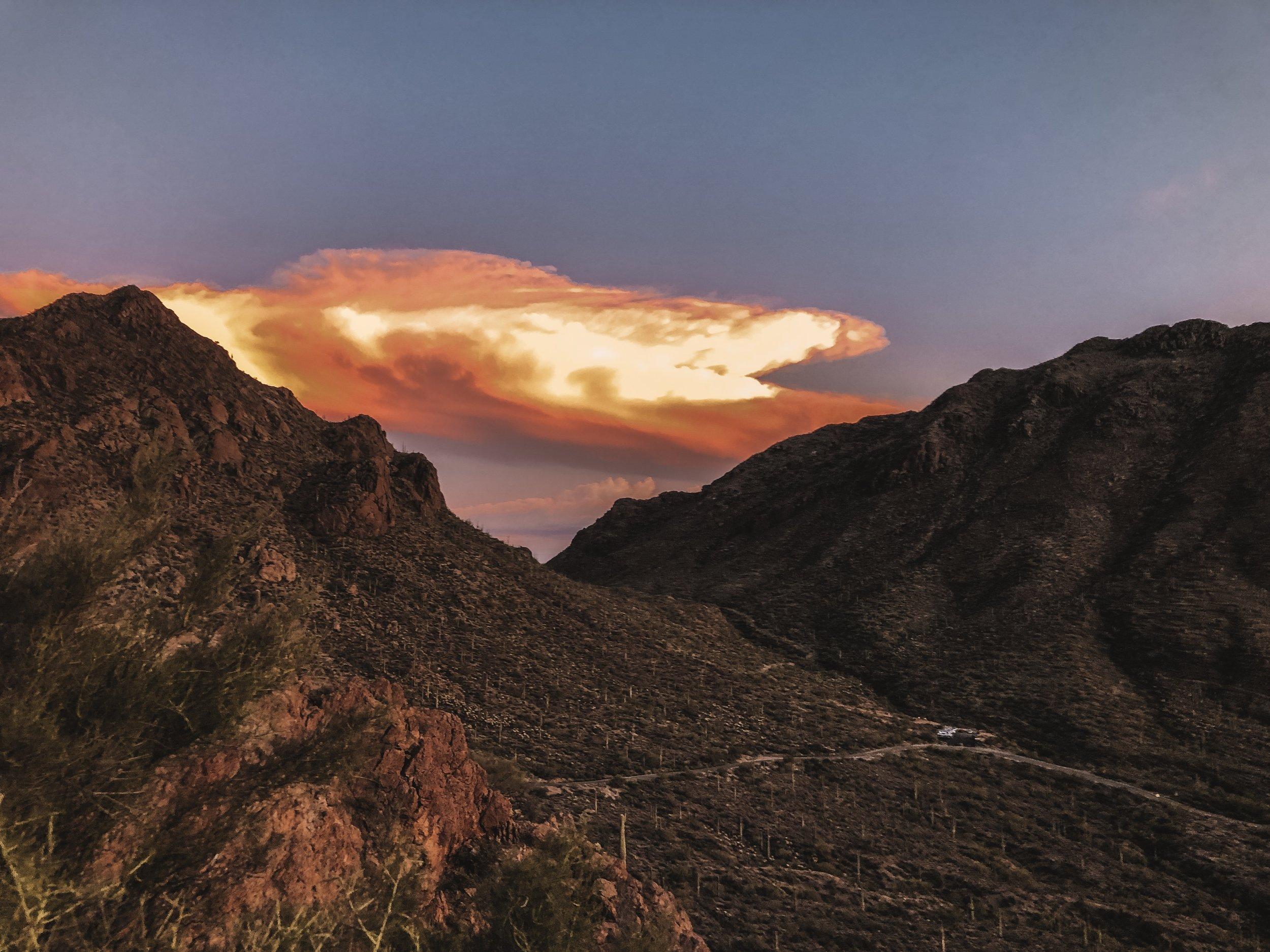 ella-talei-tucson-sunset
