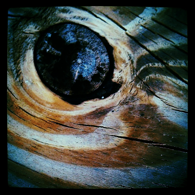 A zebra eye this would not, but this wood knot and grain, the zebra eye our picnic table has got.