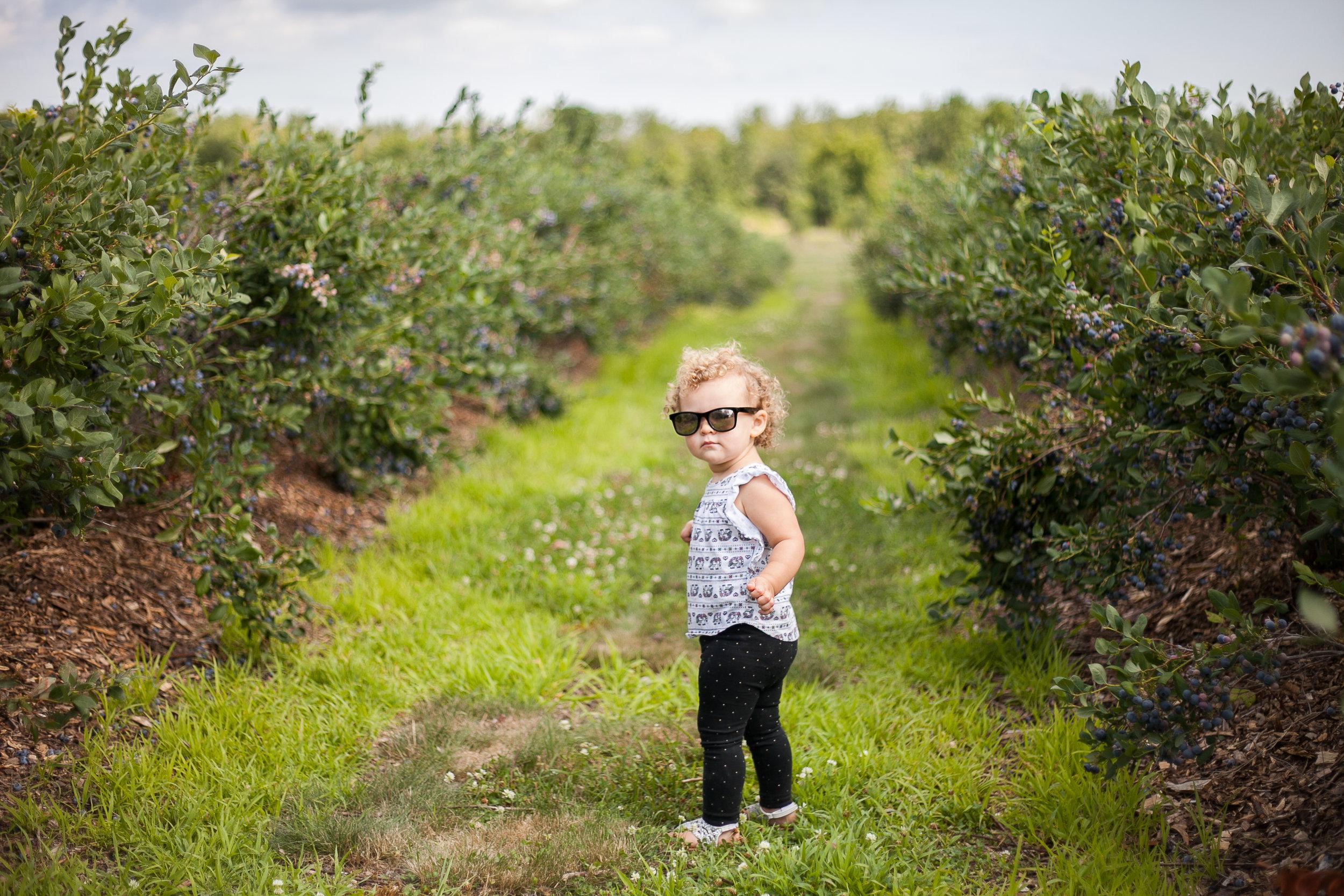 Avery berries-2.jpg