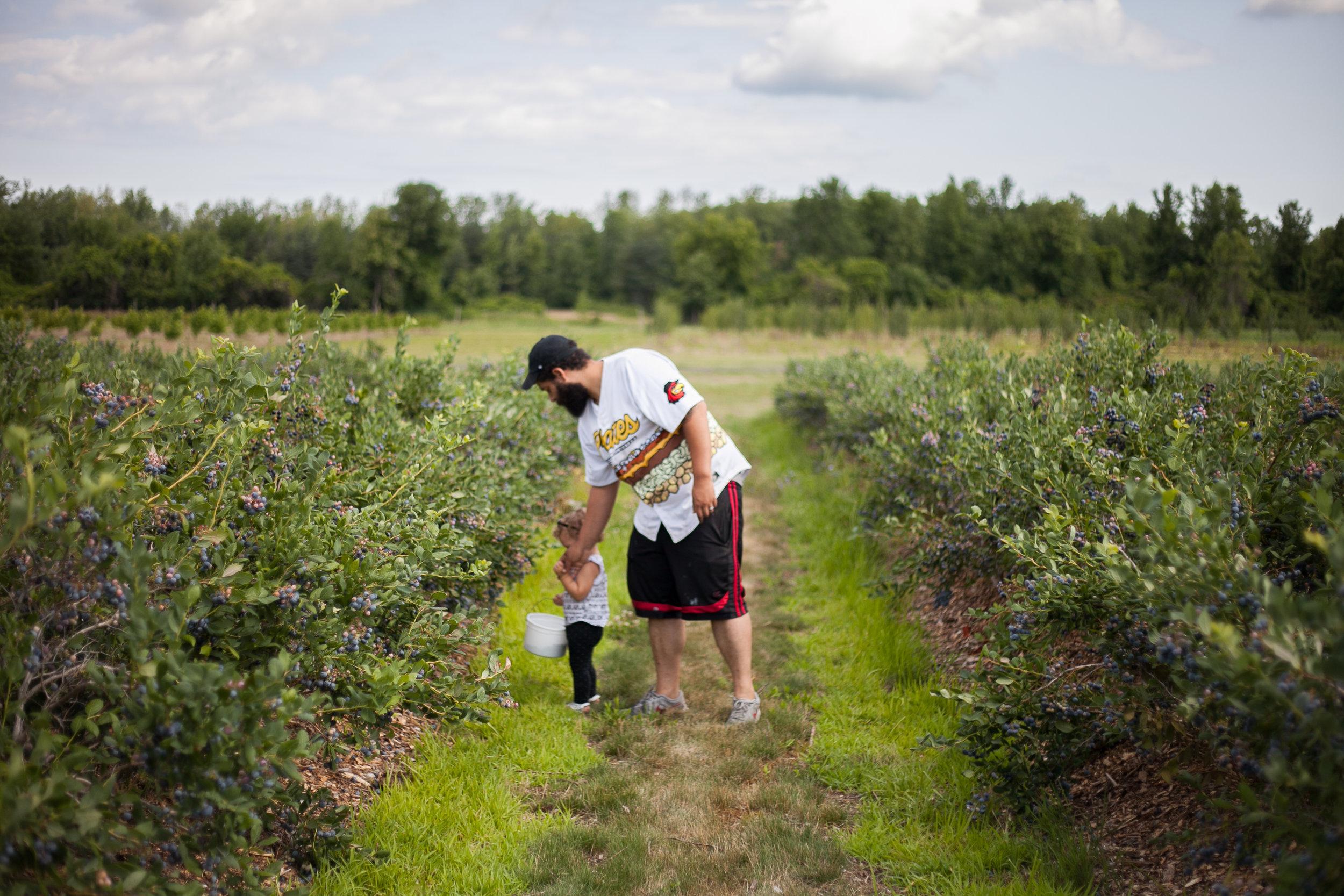 Avery berries-16.jpg