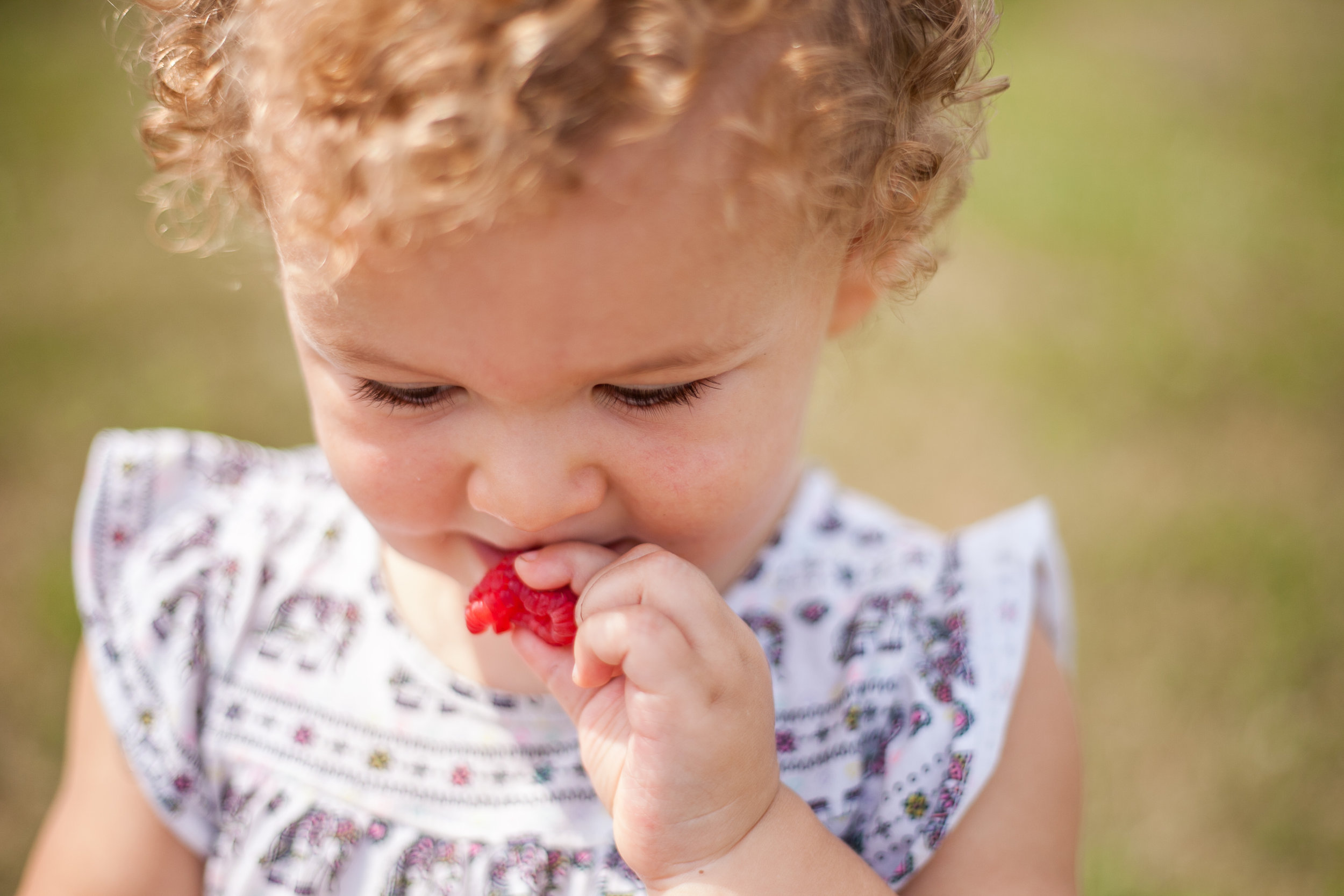 Avery berries-21.jpg