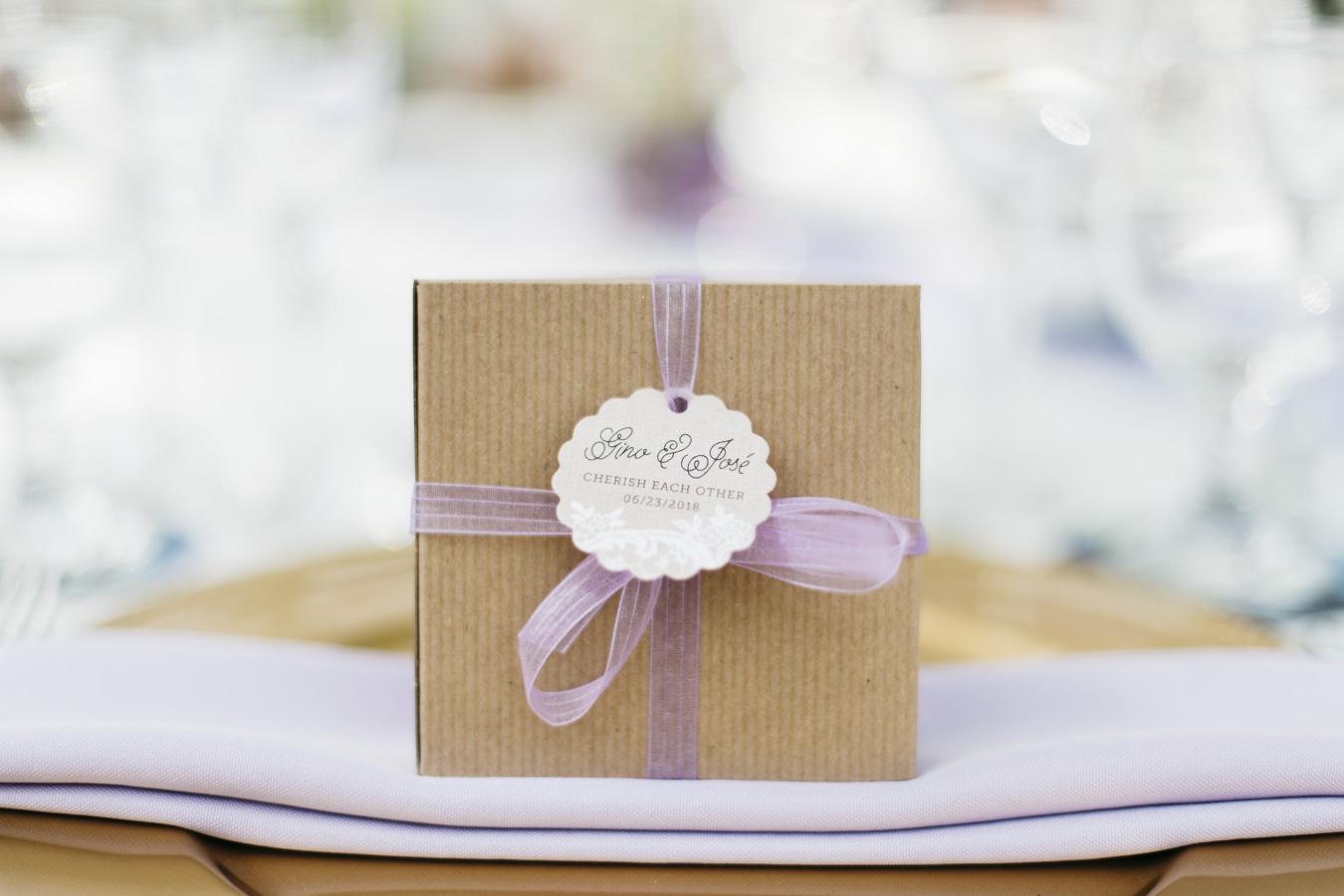Gino_Jose_Sarasota_FL_Wedding_June_23_2018-7.jpg