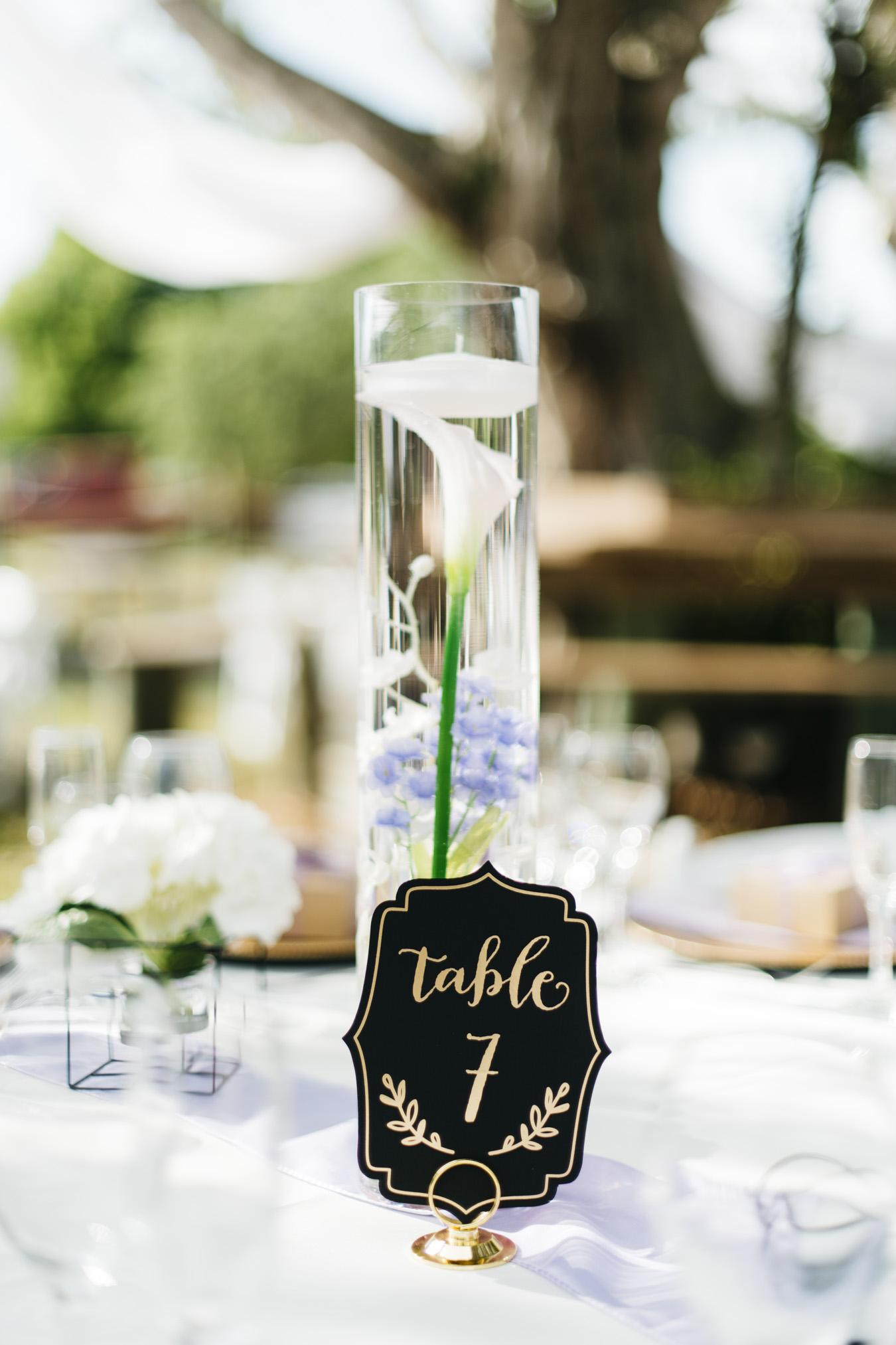 Gino_Jose_Sarasota_FL_Wedding_June_23_2018-9.jpg