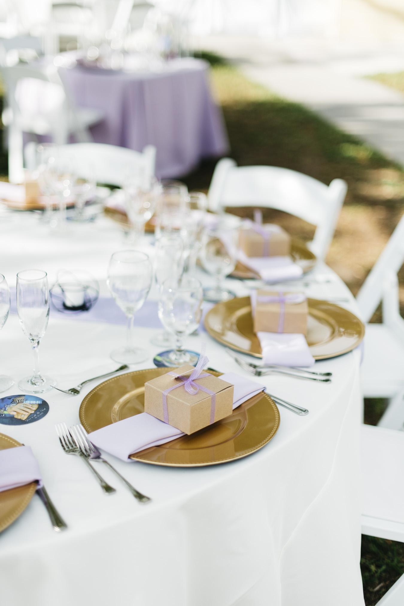 Gino_Jose_Sarasota_FL_Wedding_June_23_2018-10.jpg