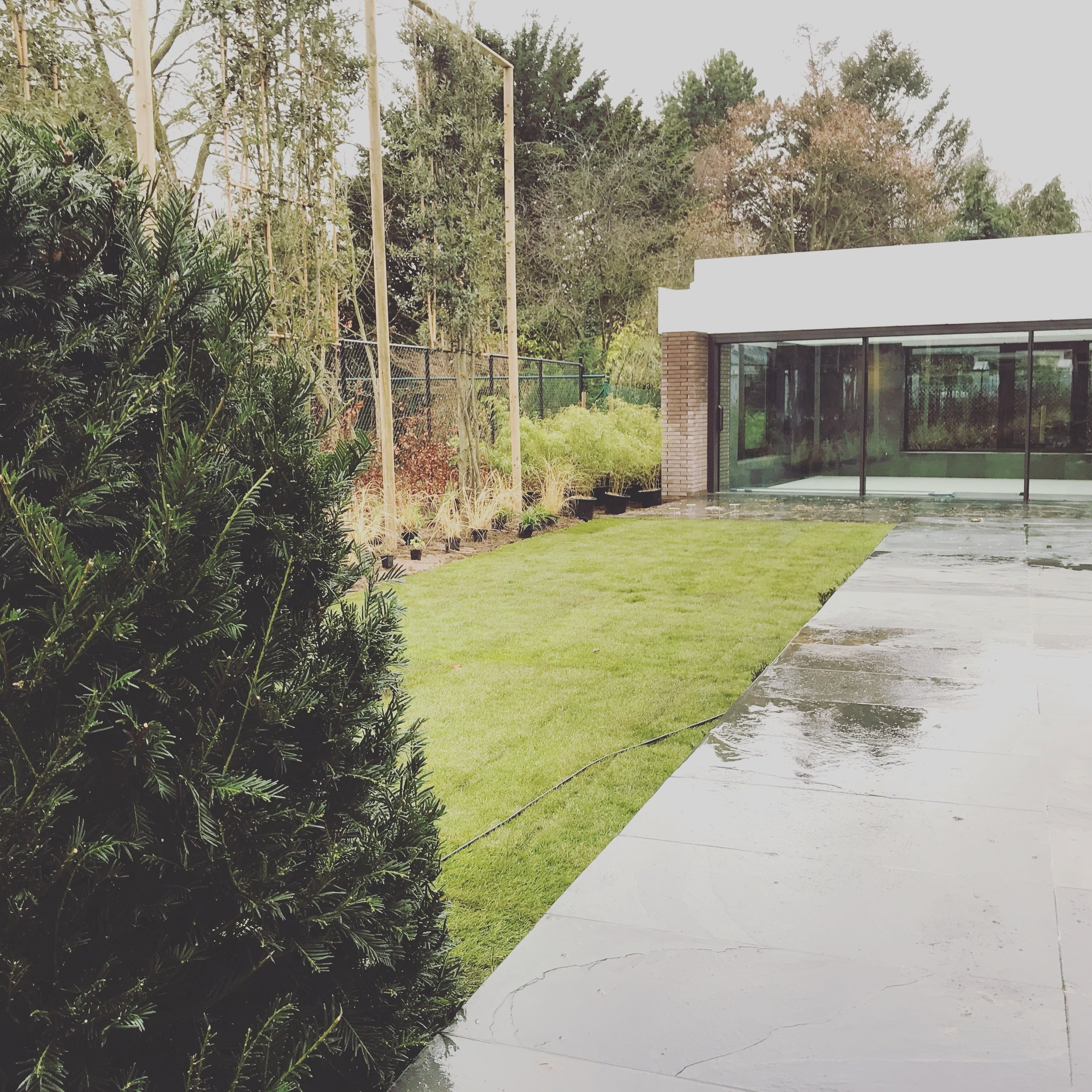 Myproject | tuinaalmeg pad poolhouse.jpg