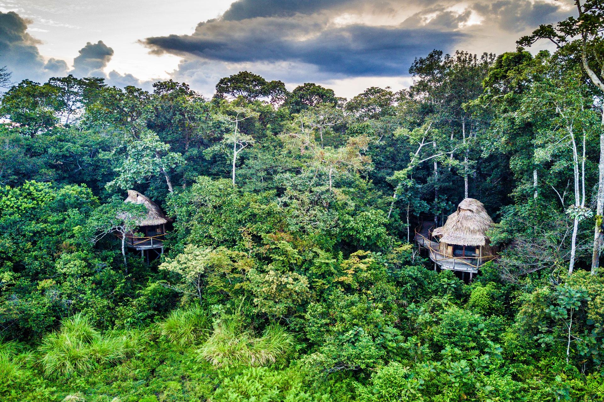 Odzala Discovery Camps Congo Brazzaville