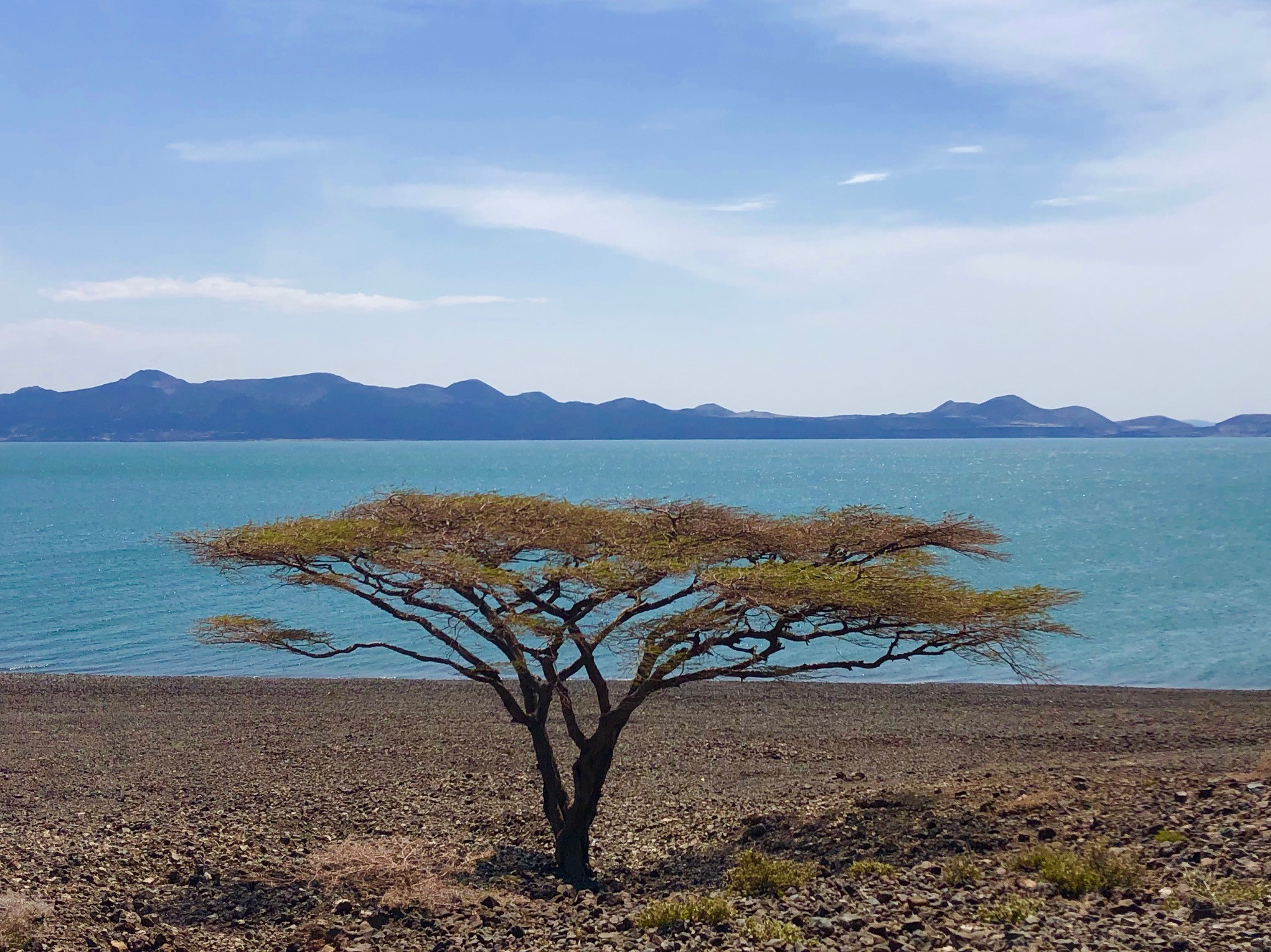 First sight of Lake Turkana