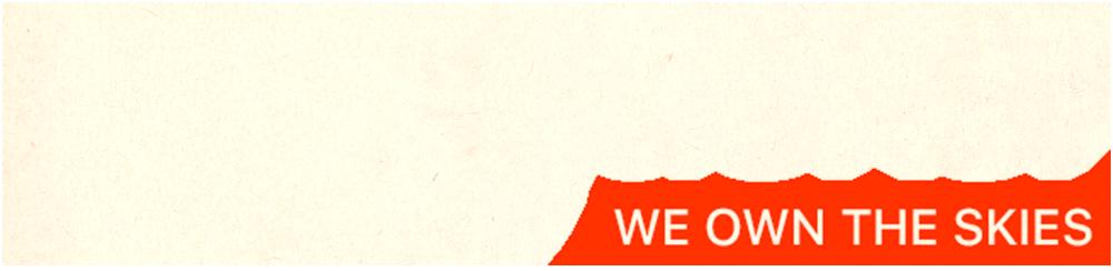 Skyjacker logo