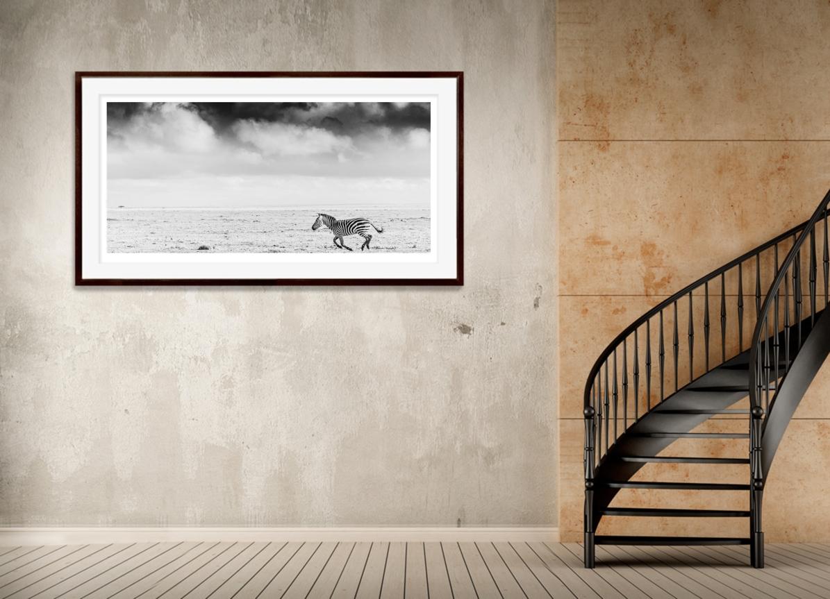 Pegasus_framed.jpg