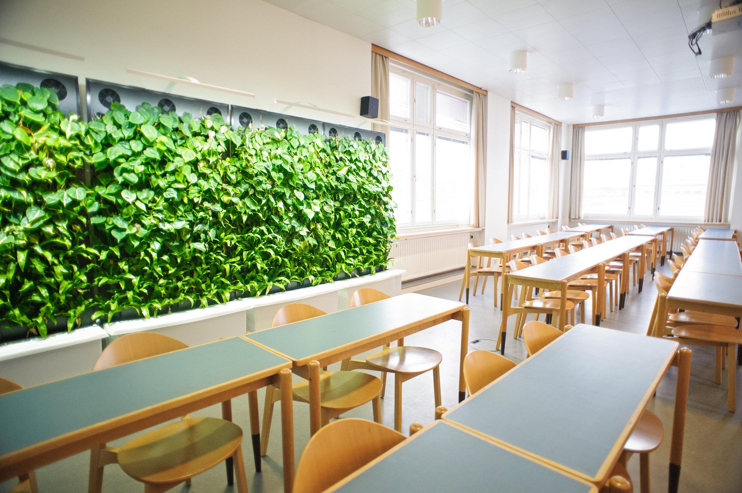 naava-classroom.jpg