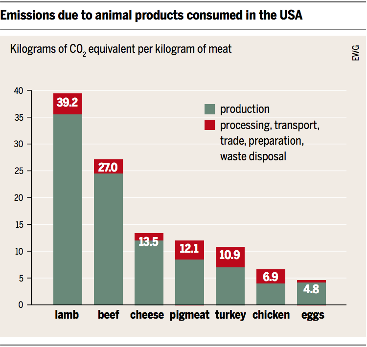 Source: Heinrich Boell Foundation, Friends of the Earth Europe - Meat Atlas