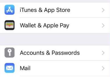 Accounts & Passwords.JPG