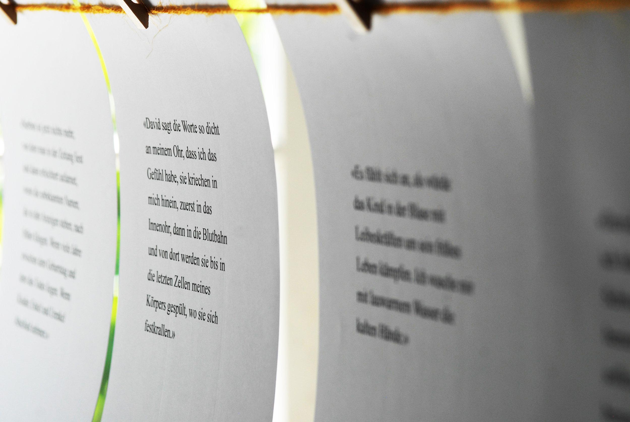 DSC_0258 Kopie.jpg
