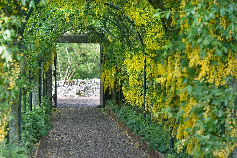 Aikwood-Garden.jpg
