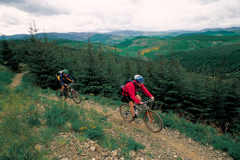 Glentress Forest, Copyright VisitScotland / Paul Tomkins