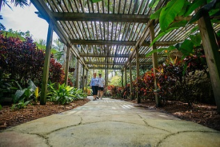 The Sunken Gardens in St. Petersburg, Florida