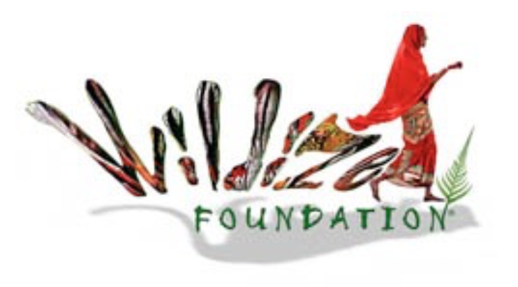 wildize logo.png