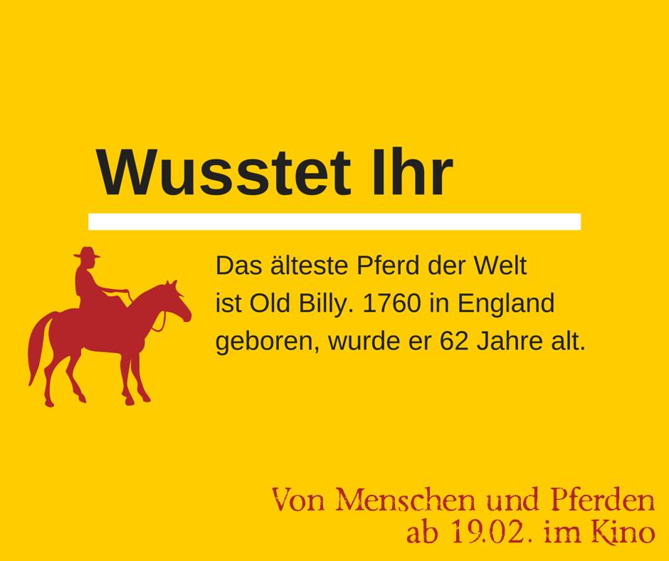 Wusstet-Ihr.png