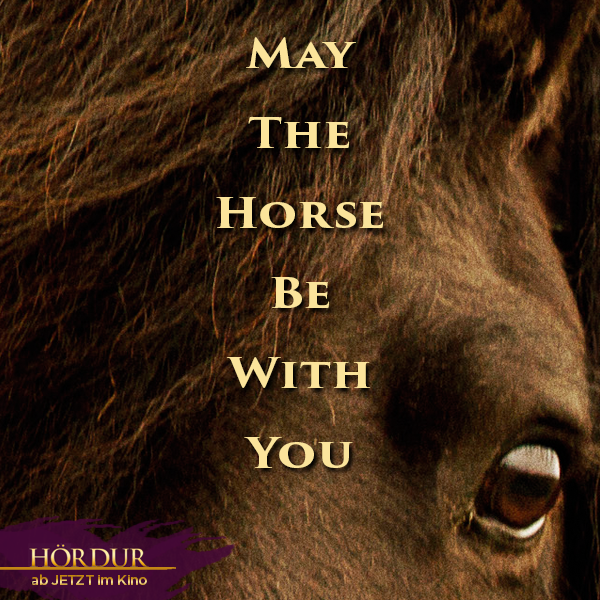 May-the-horse-be-with-you.png
