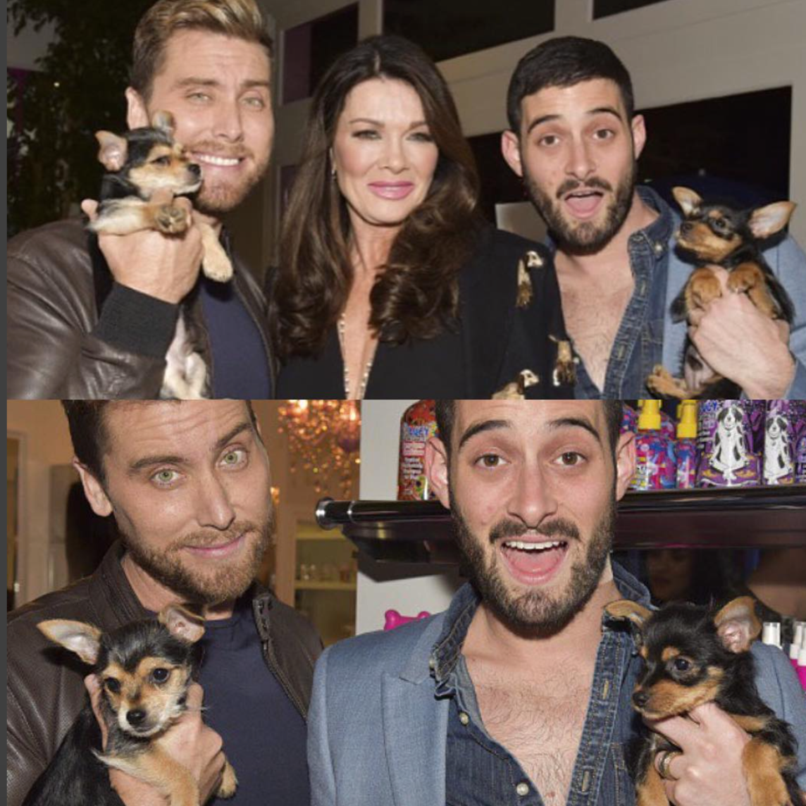 How could you not fall in love with our rescues, Chip & Dale! Lance Bass and his husband, Michael Turchin were the real Rescue Rangers as they adopted these beautiful pups. They are certainly in good hands and we can't wait to see them again soon at Vanderpump Dogs as Michael & Lance are on our Awareness Ambassador Committee.