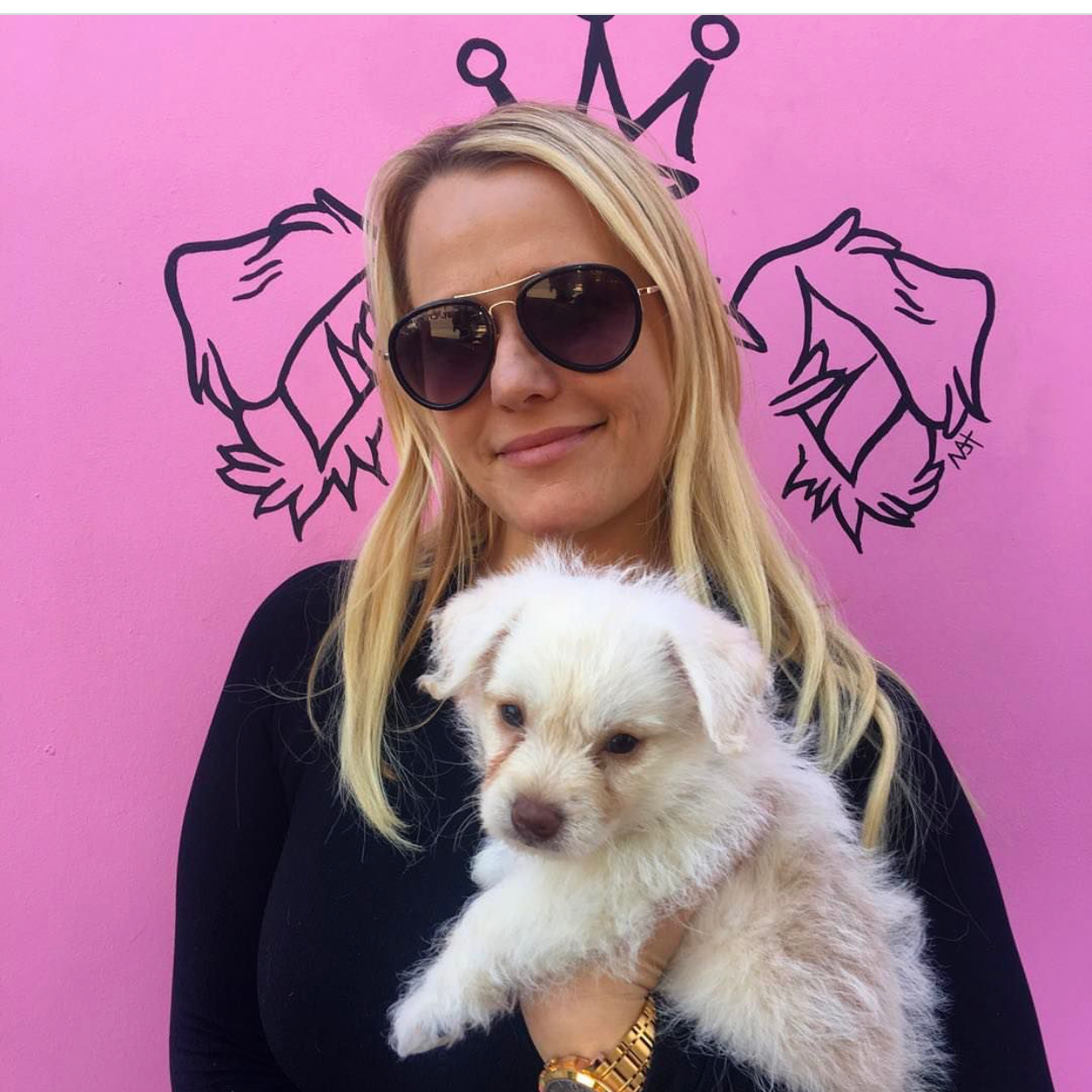 Presley Vanderpump is enjoying his new life at his forever home with his mother who owns a dance studio!! Come visit us again soon and show us your dance moves, little guy!