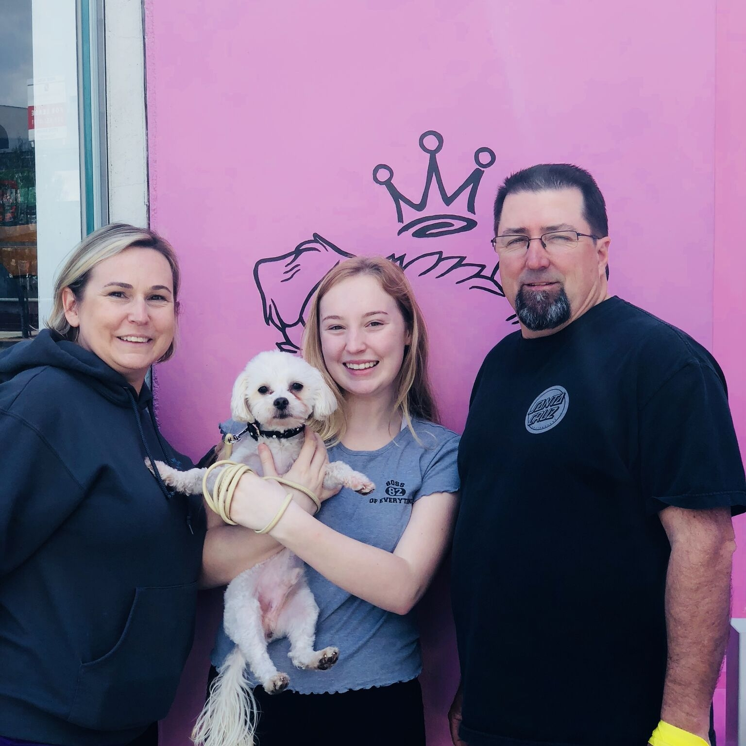 Rupert came to us from a shelter with a cone and a bunch of matted fur. He is now smiling and ready for his new life with his amazing family! We love you Rupert!