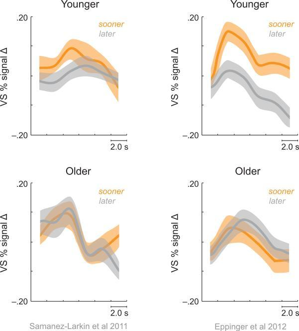 These graphs illustrate the difference in activity in the ventral striatum of the brain when older and younger people are presented with long and short term rewards. Gregory R. Samanez-Larkin