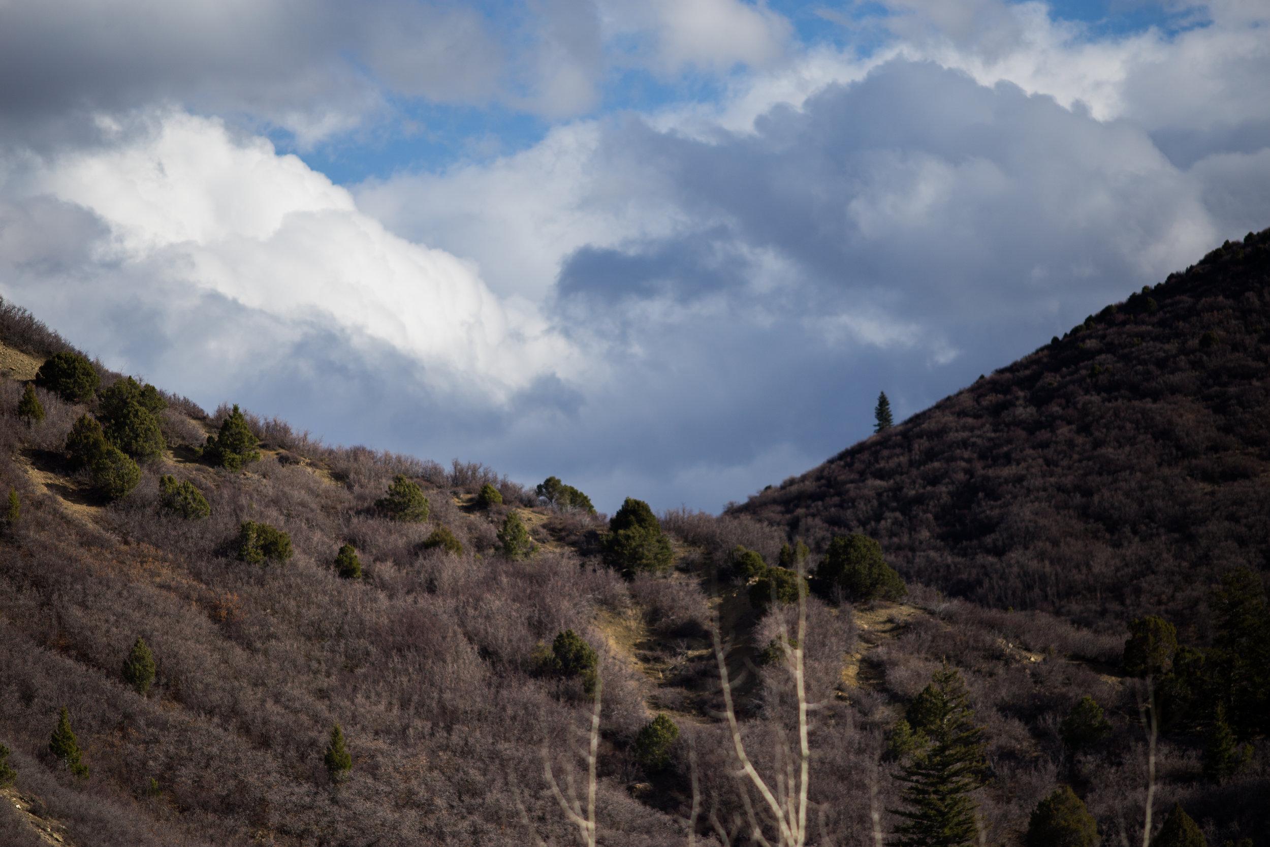 Glenwood Mountain4.jpg