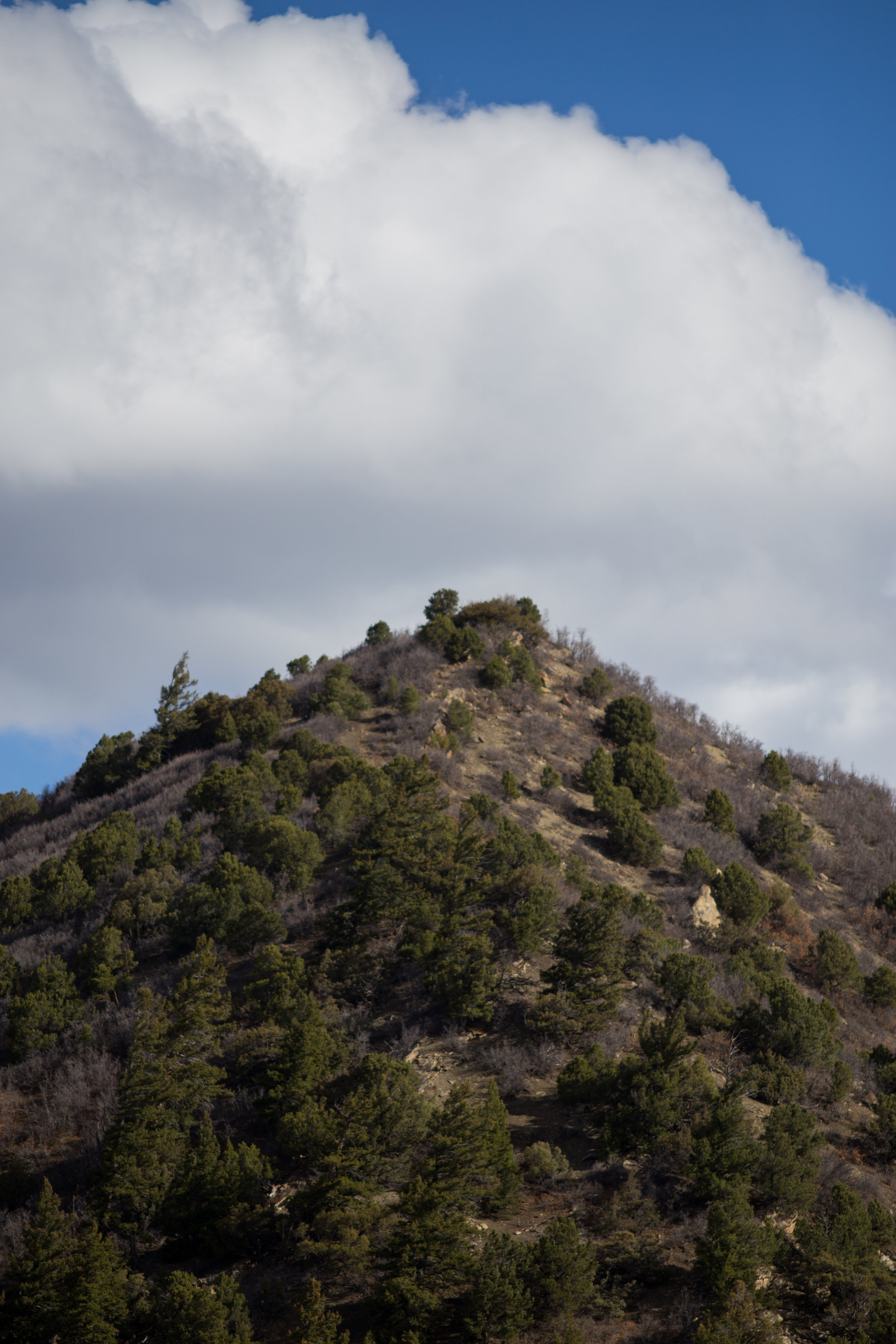 Glenwood Mountain5.jpg