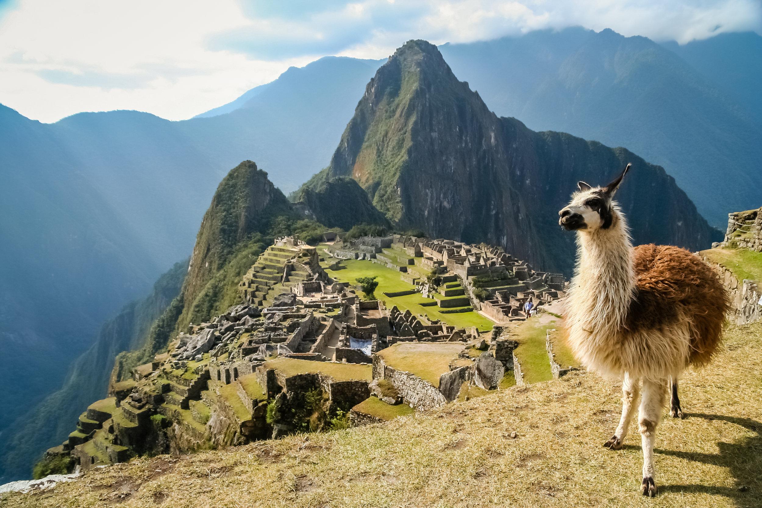 Lama-And-Machu-Picchu-588223086_3456x2304.jpeg