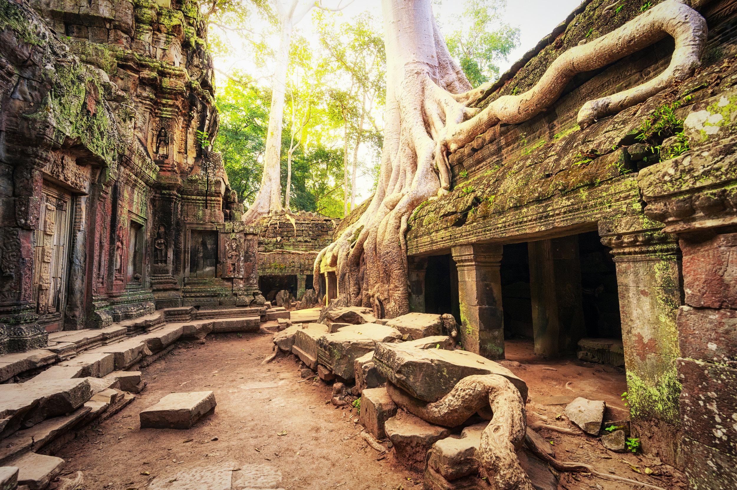 Angkor-Wat-Cambodia.-Ta-Prohm-Khmer-temple-498509111_3800x2528.jpeg