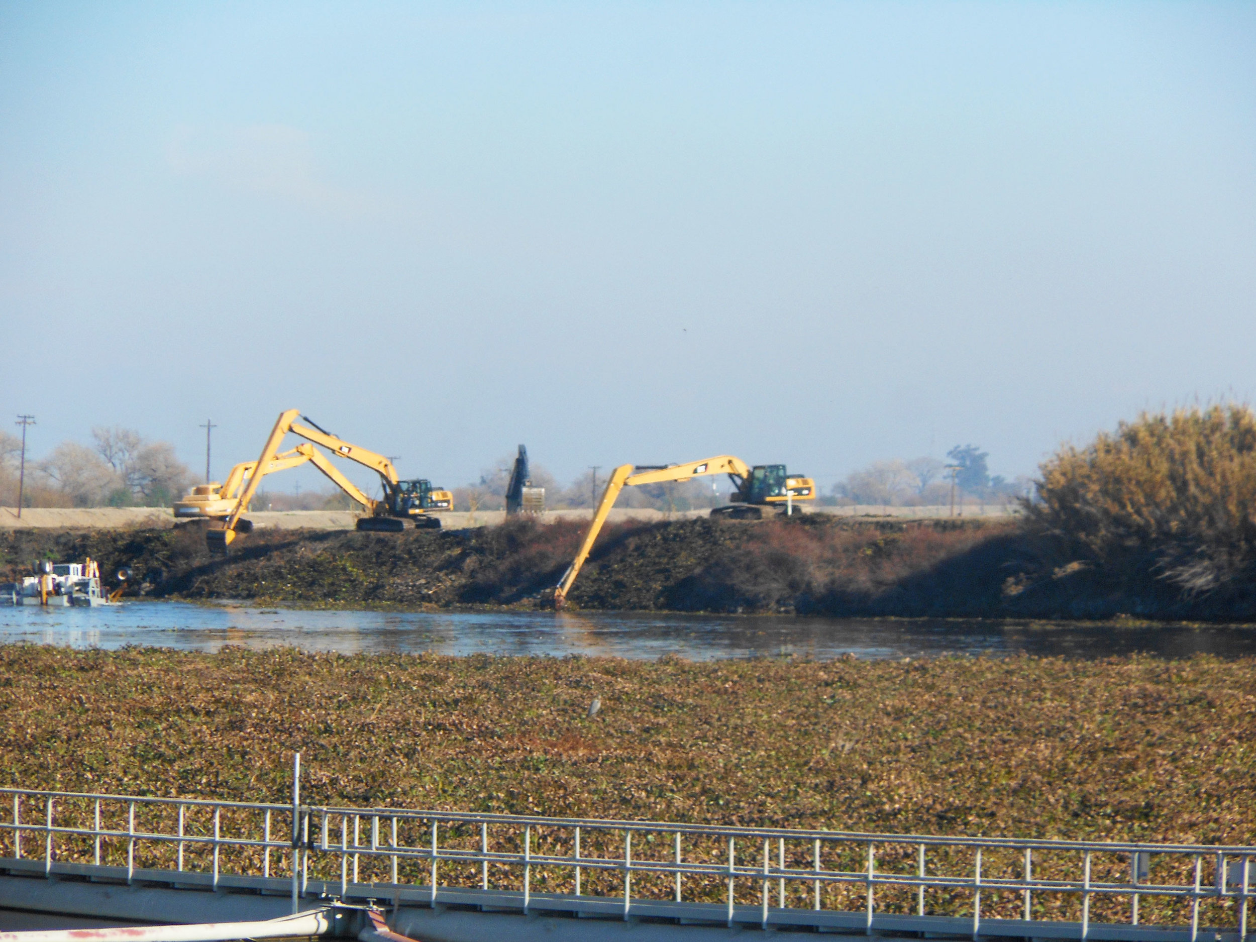 Friant Water Authority Maintenance Staff removing Hyacinth in conjunction with SLDMWA in the California Delta