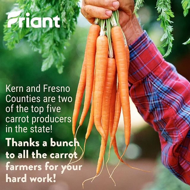 #Agriculture is a big part of our #CentralValley! Thanks to all the carrot farmers for your hard work! Check out this stat from the California Department of Food and Agriculture's 2018 Agricultural Statistics Review! bit.ly/2WfAAA1  #Fresno #Kern #cawater #water