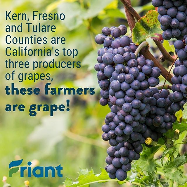 Who needs a little #fact to get Monday started? Check out this stat from the California Department of Food and Agriculture's 2018 Agricultural Statistics Review! bit.ly/2WfAAA1  #Fresno #Kern #Tulare #agriculture  #cawater #water