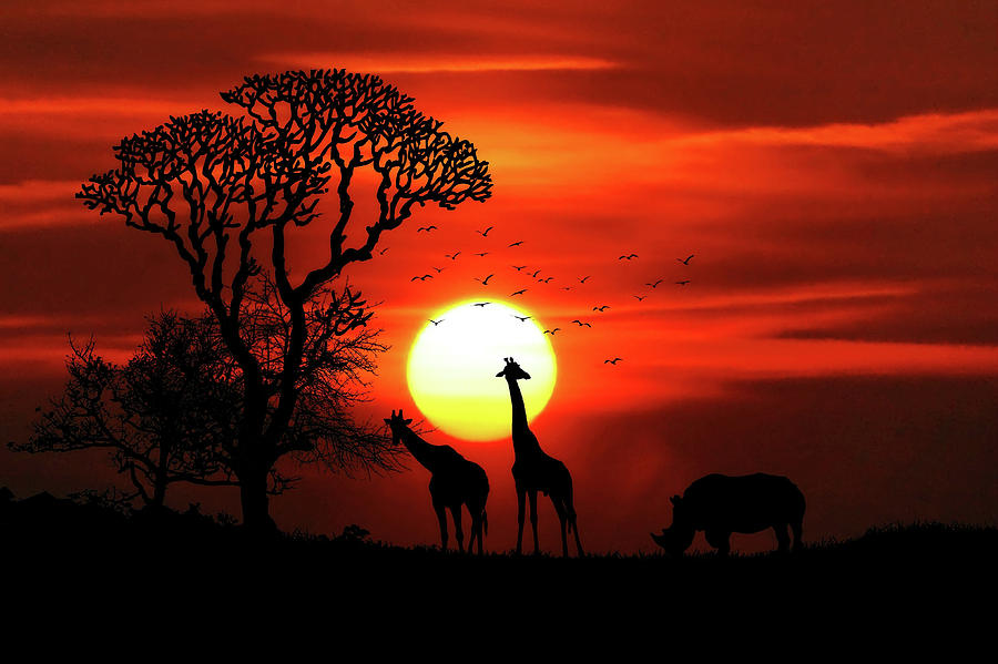 red-african-savannah-sunset-with-rhino-and-giraffes-wall-art-prints.jpg