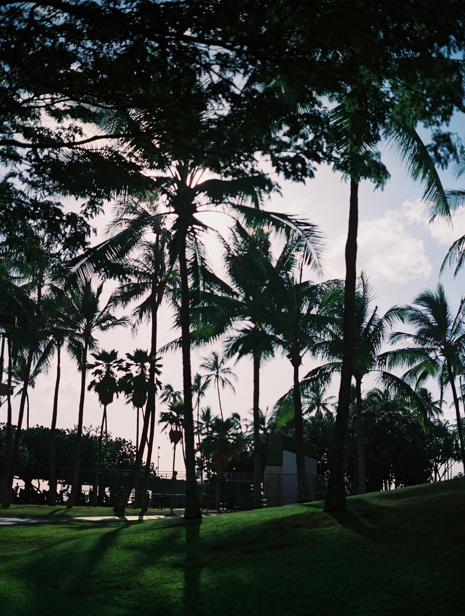 Hawaii Vacations-7.jpg