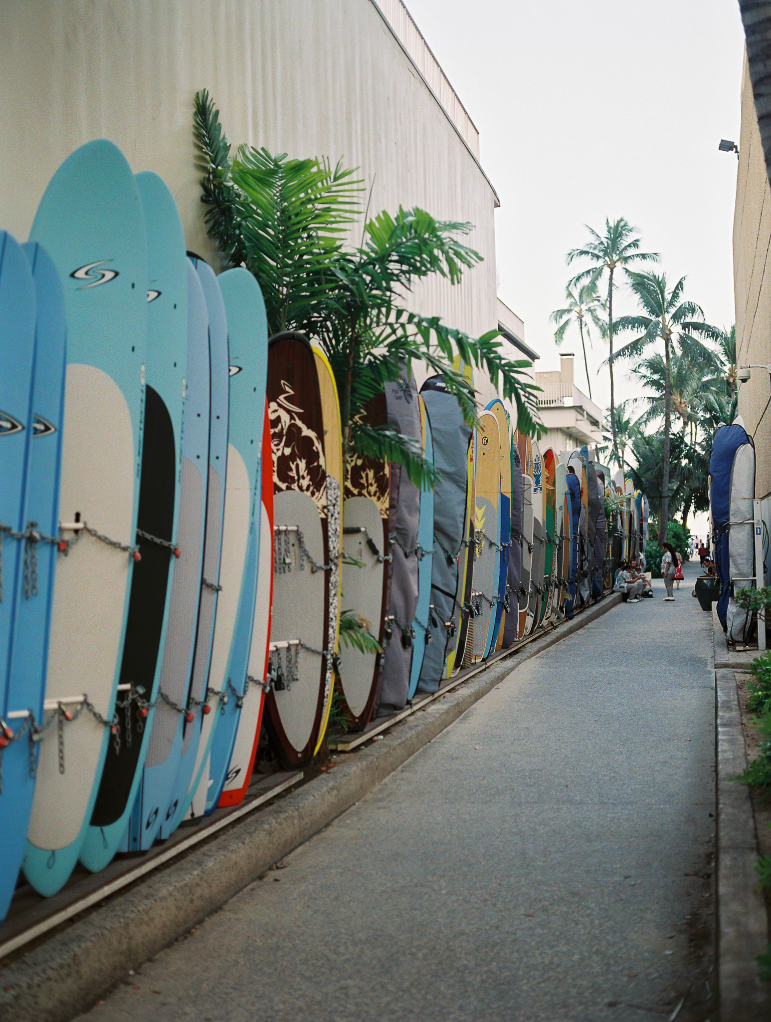 Hawaii Vacations-8.jpg