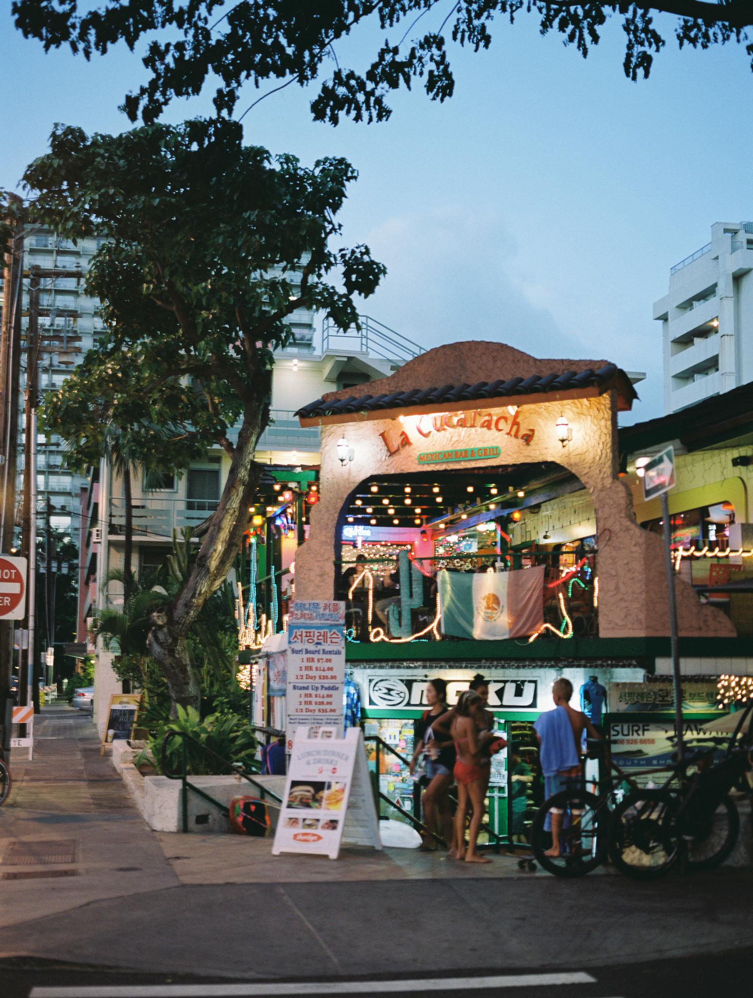 Hawaii Vacations-11.jpg