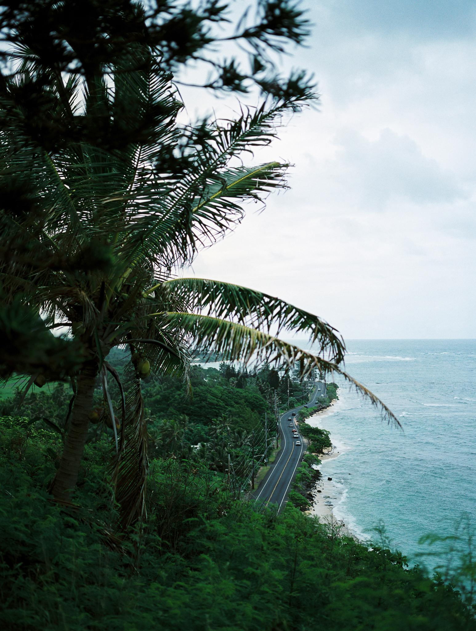 Hawaii Vacations-17.jpg