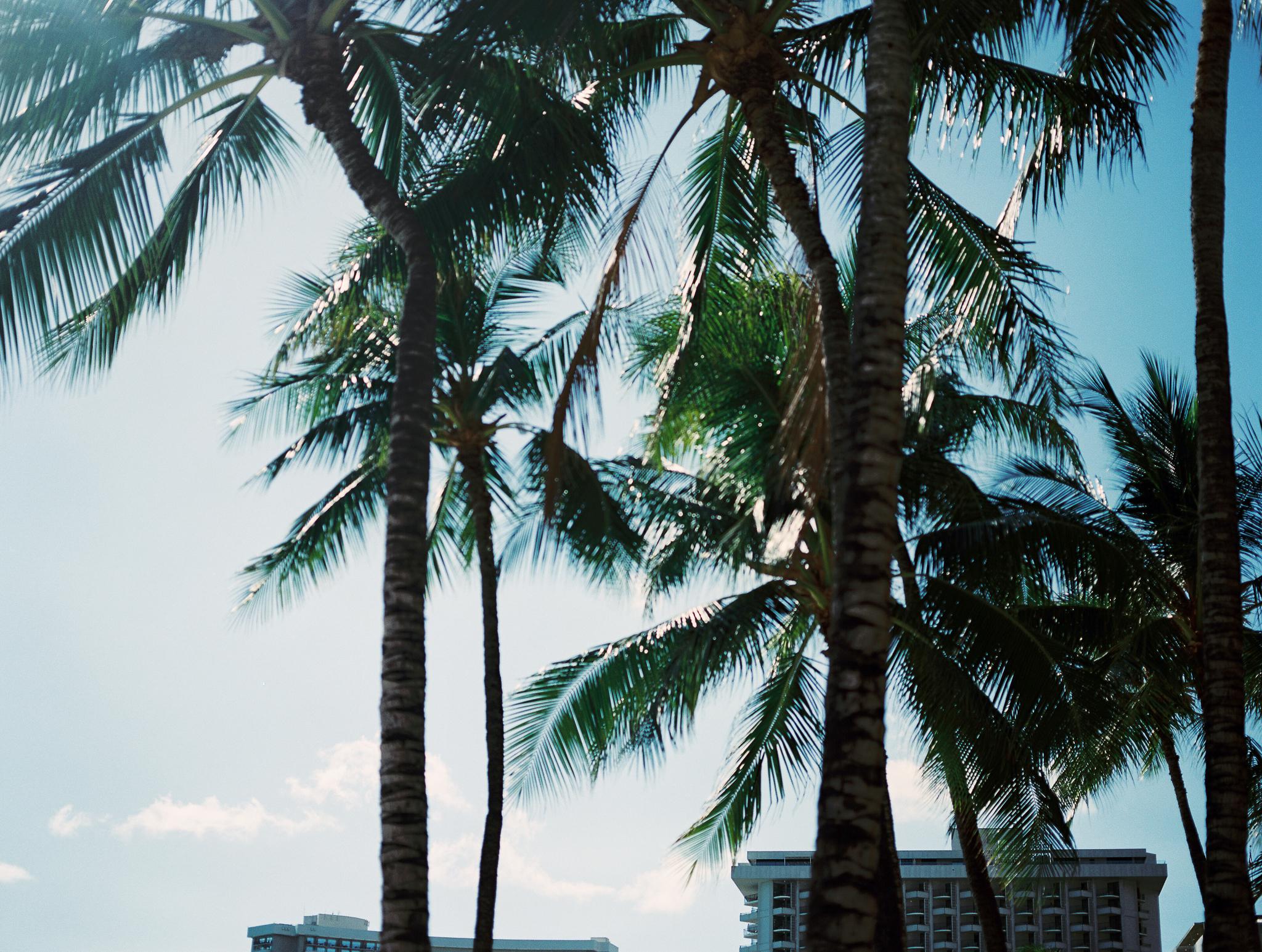 Hawaii Vacations-85.jpg