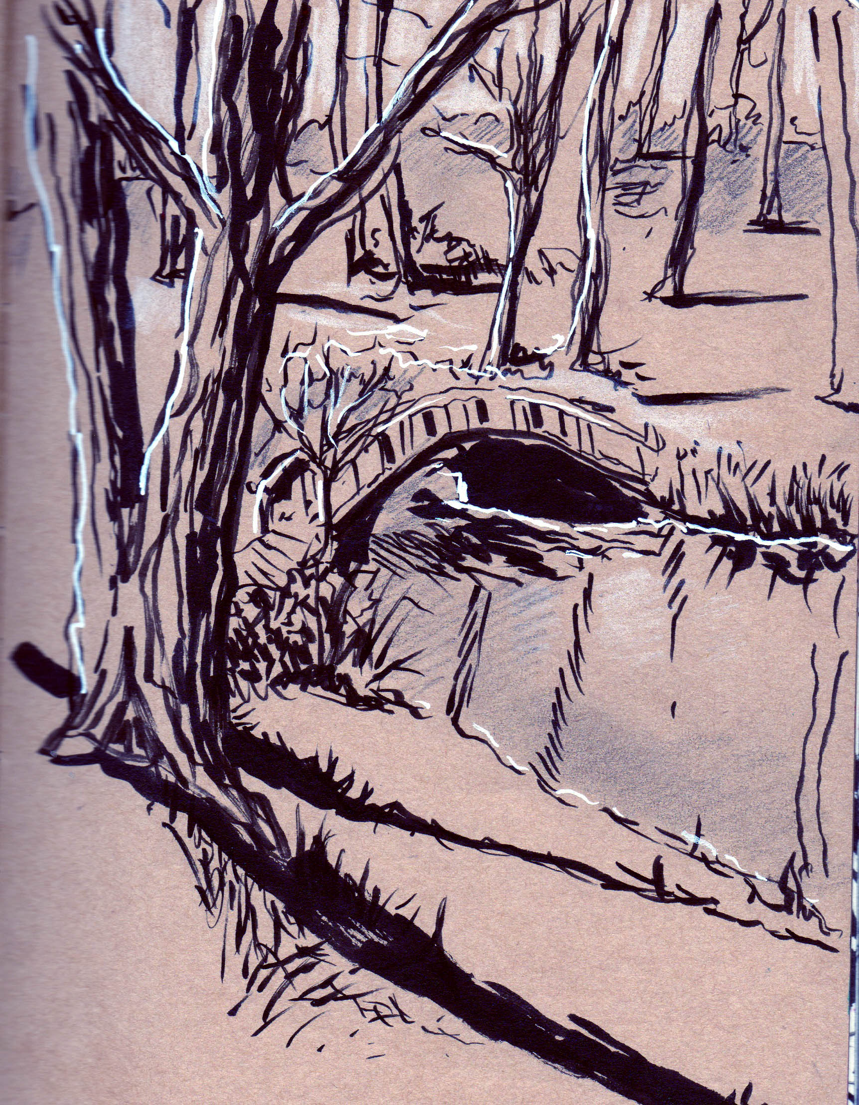 drawing of forest with tall tress, with a stream and small bridge in the foreground
