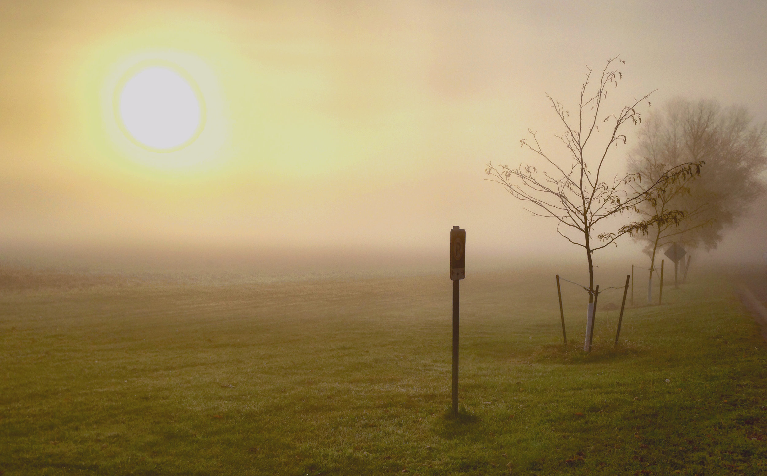 FoggyMorning1.jpg